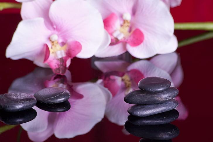 massage, mise en miroir, Orchid, récupération, détente, pierres de guérison, spirituelle
