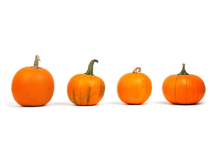 tardor, decoració, tardor, aliments, fresc, frescor, Halloween