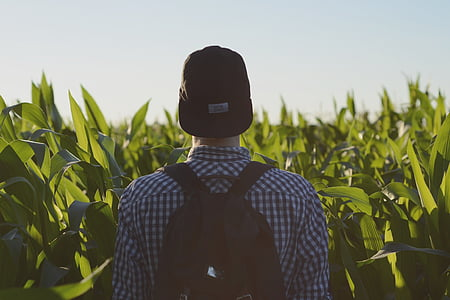 backpack, field, man, person, sky, nature, men