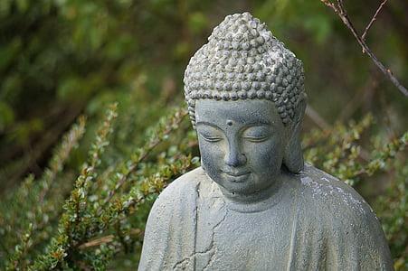 Buddha, sedící, portrét, náboženství, meditace, obrázek, Asie