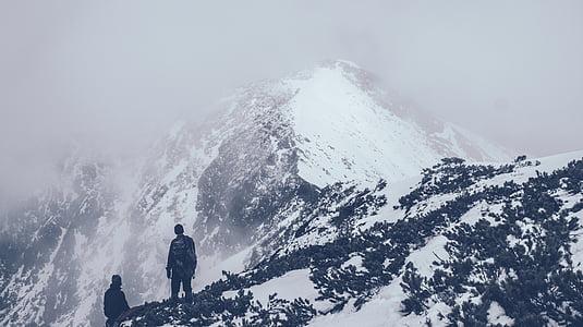 mountain, summit, peak, top, altitude, high, dom