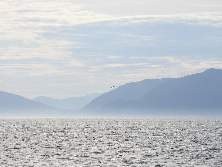 l'aigua, Alaska, natura, oceà, Mar, blau, escèniques