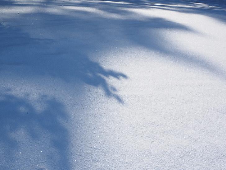snö landskap, vinter, solen, skugga, snö, kalla, evig snö