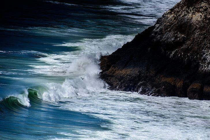 köpük, manzara, hareket, doğa, okyanus, açık havada, kaya