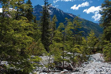 Bariloche, Argentina, Holiday, turism, vatten, Mountain, naturen