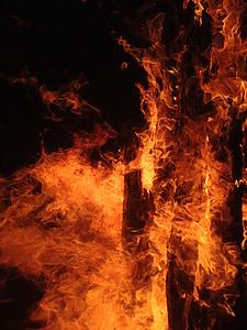 foc, ardent, incendi, flama, calor, cremar, calenta
