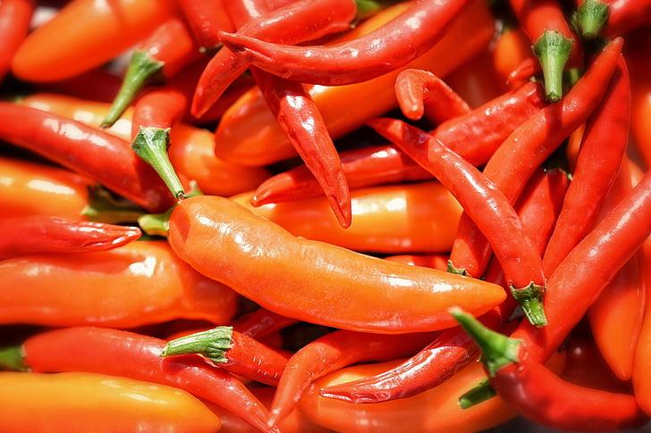 fons, paper d'empaperar, bitxo vermell tailandès, Serrano taronja de Xile, pebre, verdures, calenta