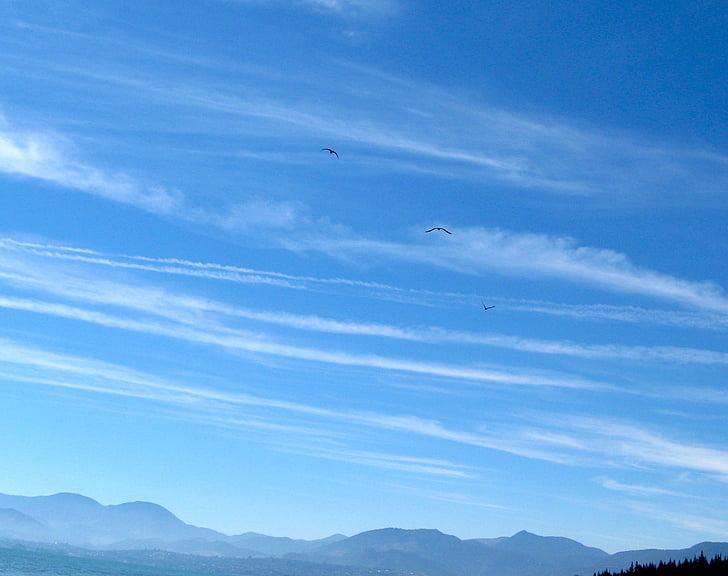 cel, núvols, blau, a l'exterior, escèniques, tranquil·la, estratosfera