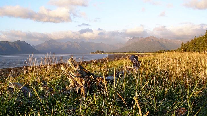 chinitna badia, Parc Nacional llac clark, preservar, Alaska, EUA, Cook inlet, paisatge
