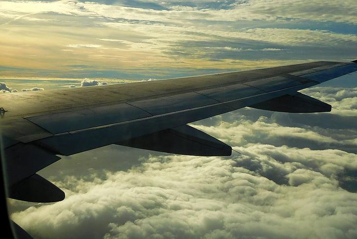 kone, lento, koneen siipi, matkustaa, lentokone näkemyksen