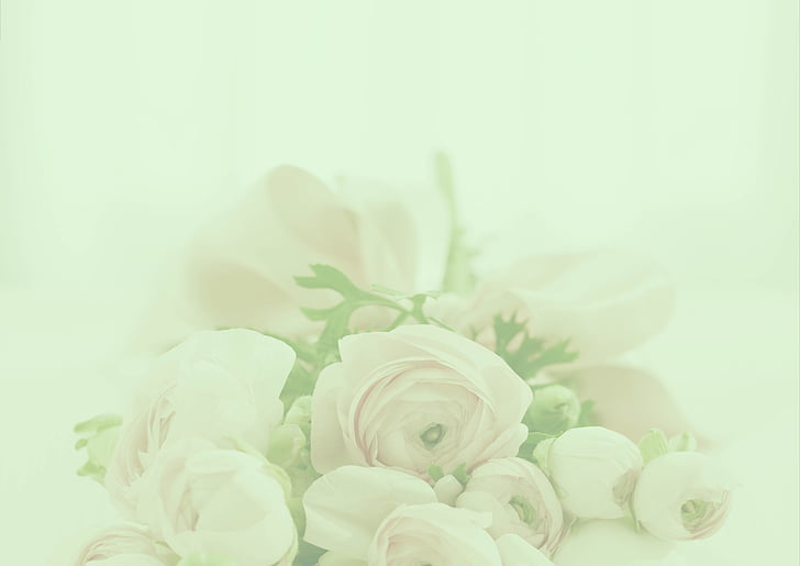 pastel, roses, background, romantic, wedding, invitation, pastellfarben