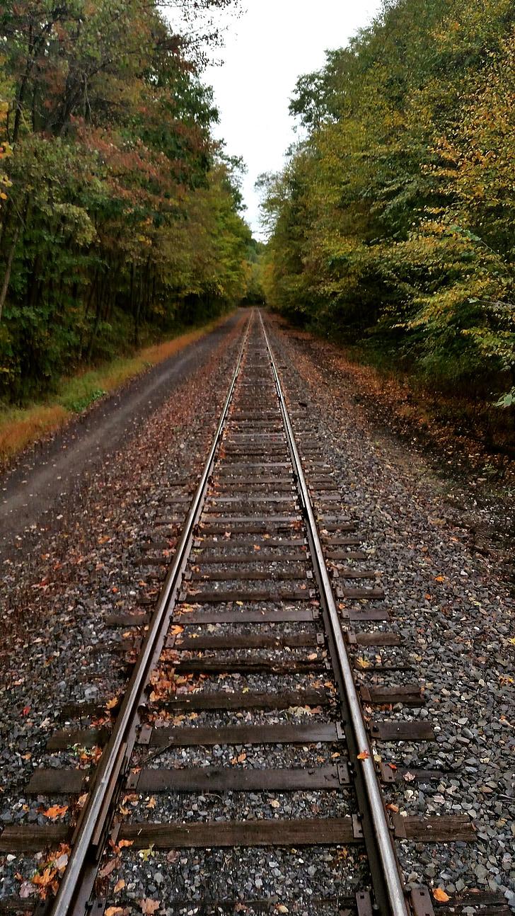 기차 트랙, 여행, 가 여행, 기차