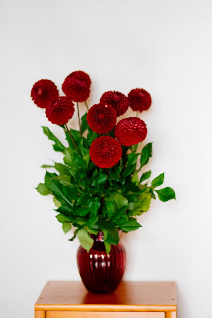 άνθιση, άνθος, μπουκέτο, χλωρίδα, λουλούδια, βάζο