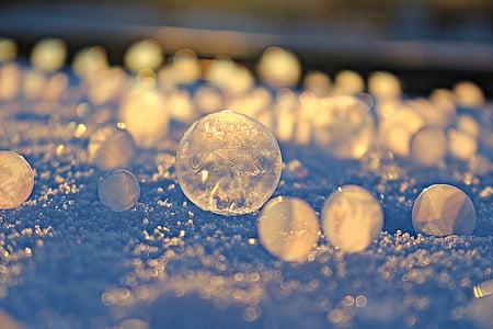 soap bubble, frost globe, frost blister, winter, ze, eiskristalle, frozen
