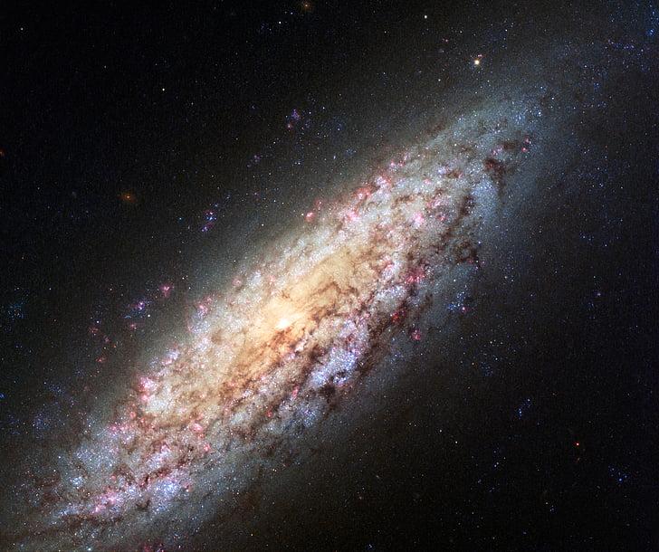 galakse, spiral, feltet dverg, stjerner, kosmos, plass, universet