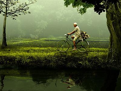 vīrietis, vecais, velosipēds, daba, zaļa, velosipēdu, Riteņbraukšana