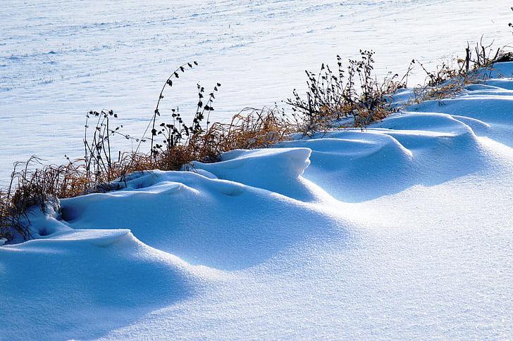 snowdrifts, winter impressions, wintry, snow, cold, winter, winter magic