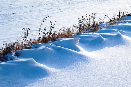 nevascas, impressões de inverno, invernal, neve, frio, Inverno, magia do inverno