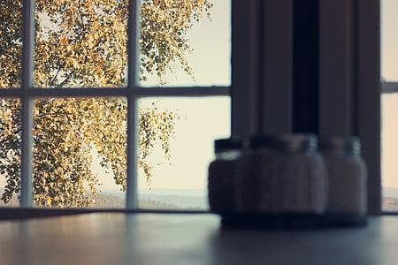 tree, outside, window, blurred, leaves, green, foliage
