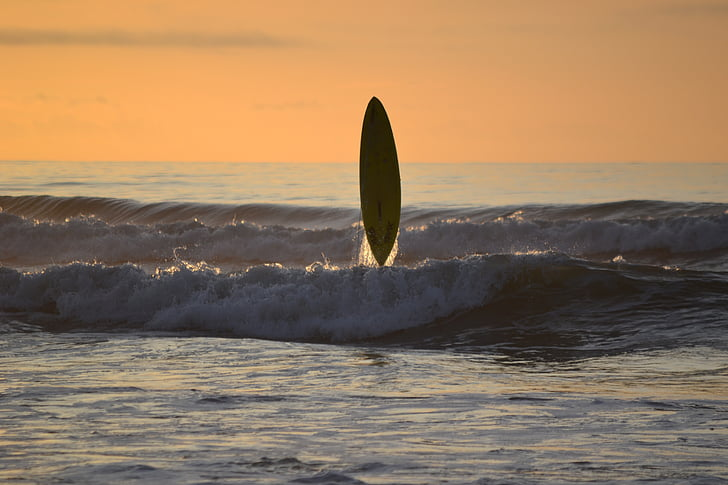 surf, posta de sol, peluda, serenitat, taula de surf, Mar, platja