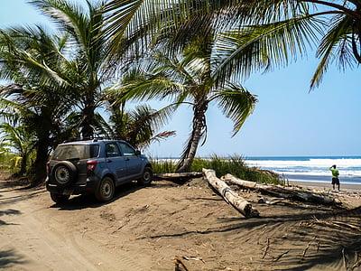 costa rica, palm trees, beach, sea, tropics, central america, tropical