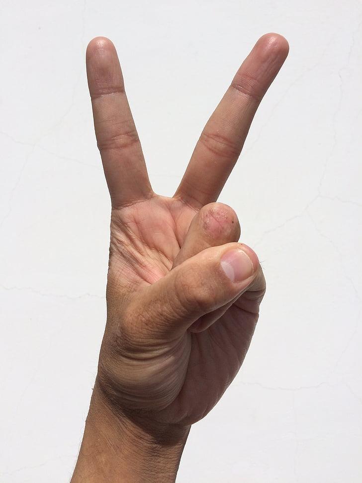Palm, hand, vinger, nagel, jonge, Japans, mensen