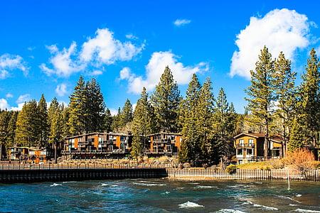 Tahoe, Lake, USA, Lake tahoe, blå, vann, trær