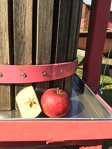 Apple, siider, vajutage, orgaaniliste, Sügis, sügisel, looduslik