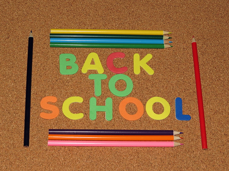 back to school, learning, school, colorful, pencil, back to school background, knowledge