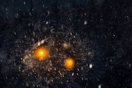 winter, landscape, night, dark, evening, snow, snowflakes
