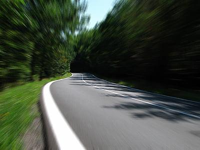 carretera, velocitat, carretera secundària, camí rural, boscos, movent-se, l'autopista
