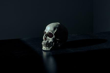 white, skull, table, dark, spooky, human skeleton, horror