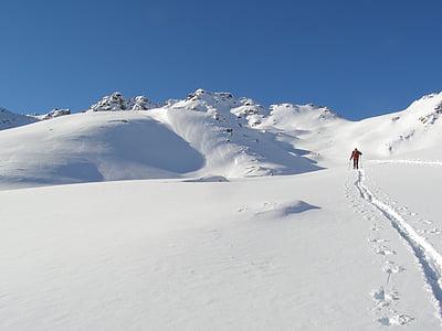 ski, backcountry skiiing, alpine, touring skis, deep snow, wintry, winter
