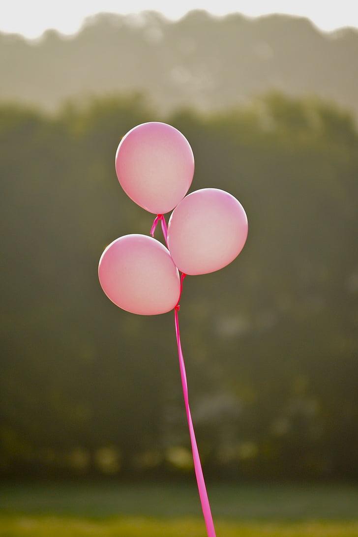 Rosa, globus Roses, càncer de mama, noia, femella, celebració, globus