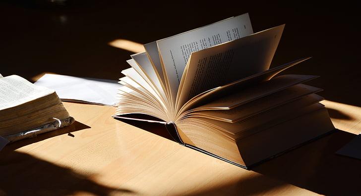 libro, leggere, letteratura, imparare, pagine del libro, tipo di carattere, libro preferito