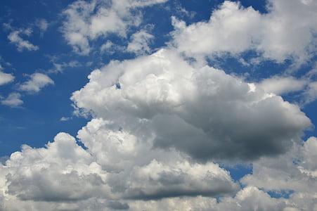 Chmura, niebo, błękitne niebo, biały chmura, niebieski, Natura, Pogoda