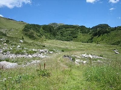 alpské, Hora, Horská krajina, Příroda