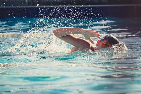 수영, 아이, 아이, 물, 여름, 스포츠, 수영장