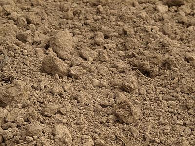 tuds, l'agricultura, terra, argila