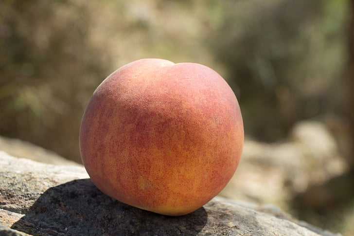 fruita, fruita d'estiu, Frisch, préssec, afruitat, sobre