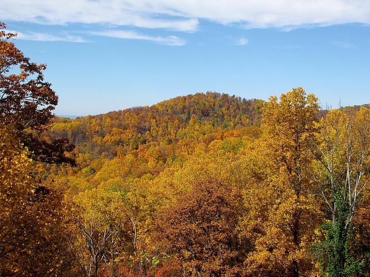 dağ, Sonbahar, Sonbahar, doğa, manzara, doğal, ağaçlar