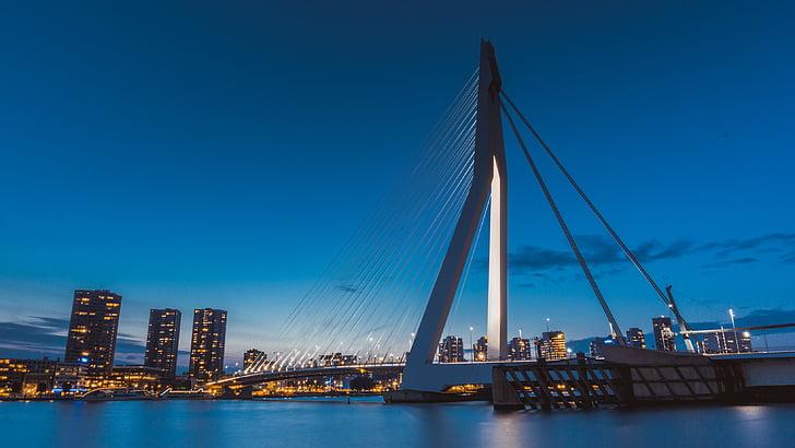 architecture, bridge, city, night, river, suspension bridge