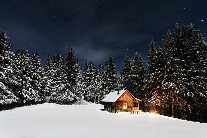 cabina, pins, nit estrellada, casa de camp, cabanya, paisatge, l'aire lliure