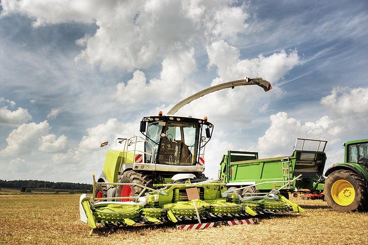recol·lectora, màquina agrícola, tractor, collita de cereals, collita, vehicle, l'estiu