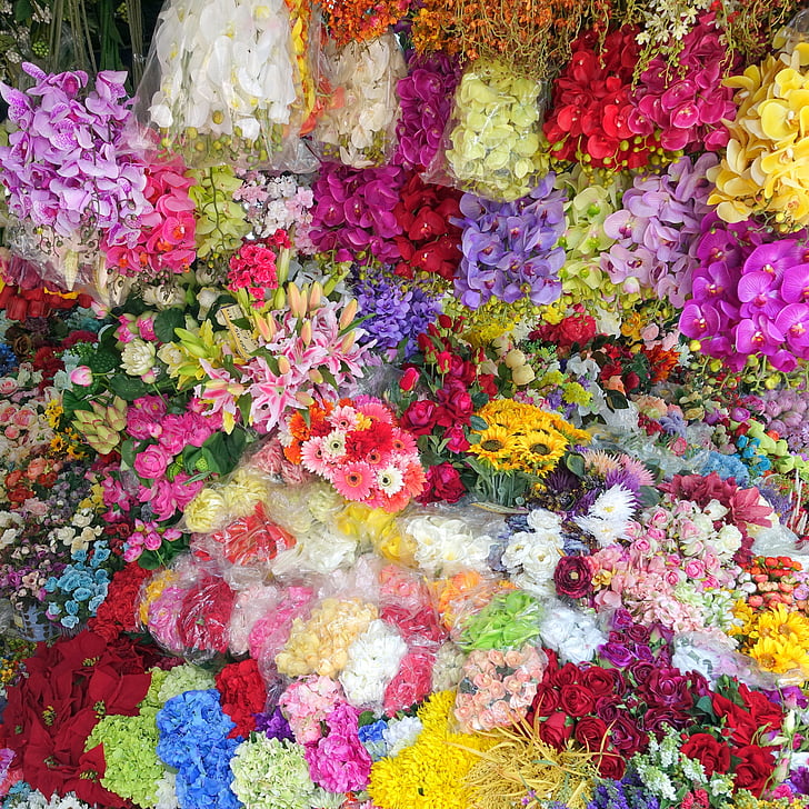 flowers, background, colourful, wallpaper, floral, flower background, flowers background