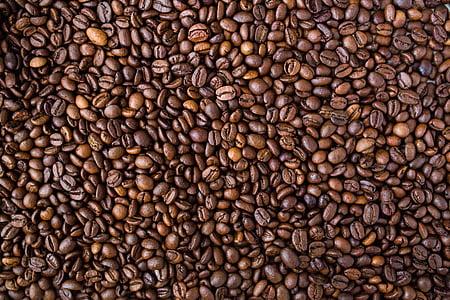 grãos de café, comida, textura, padrão, feijão, marrom, cafeína