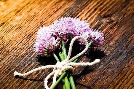cebollino, flores, flores de cebollino, púrpura, Gobierno Federal, hierbas, naturaleza