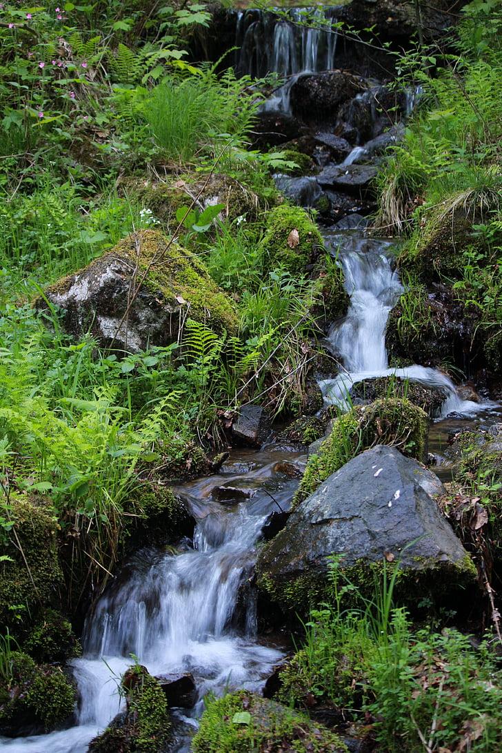 природата, водопад, красотата на природата