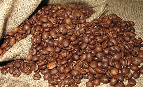 koffie, graan, Arabica, koffiebonen, Boon, bruin, cafeïne