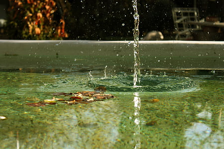 víz, csepp, csepp, őszi, nedves, medence, szökőkút